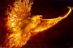 phenix esprit de la nature feu