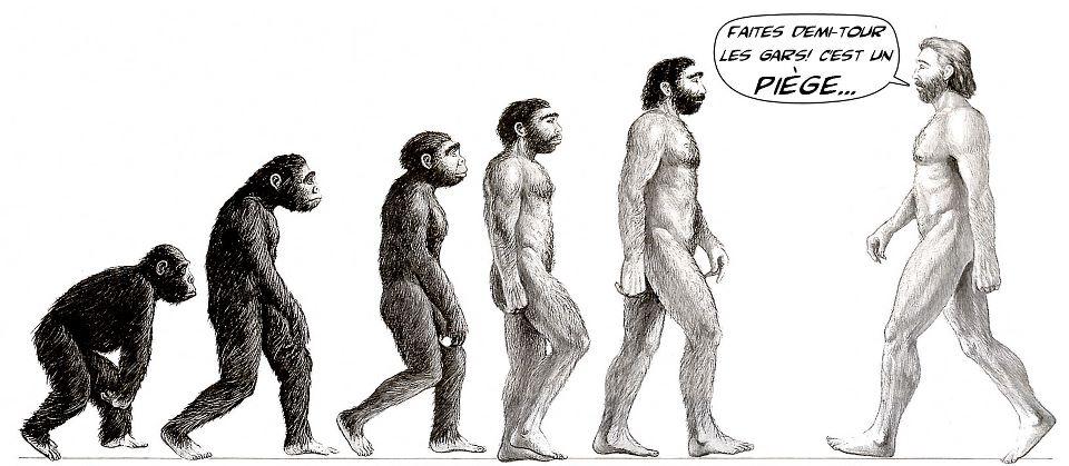 évolution et réflexion